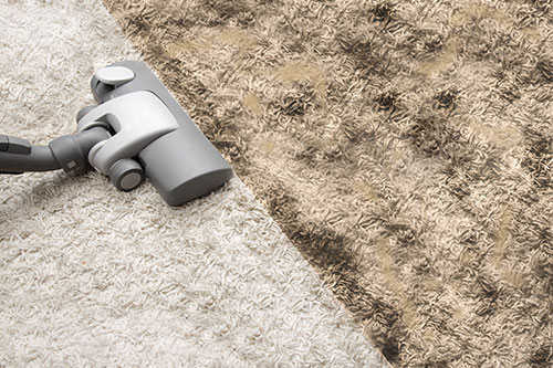 carpet cleaning services